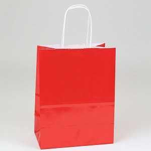 Glossy Colored Paper Shopping Bags- Chimp Size